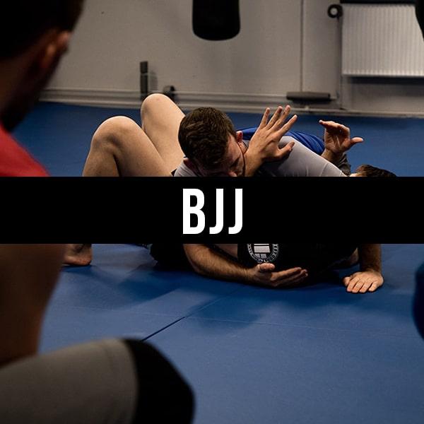 Holdtræning BJJ